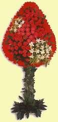 İsparta çiçek gönderme  dügün açilis çiçekleri  İsparta çiçek online çiçek siparişi