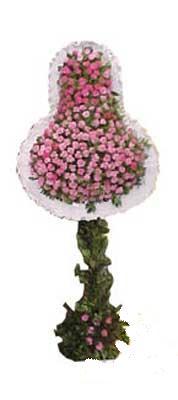 İsparta ucuz çiçek gönder  dügün açilis çiçekleri  İsparta internetten çiçek siparişi