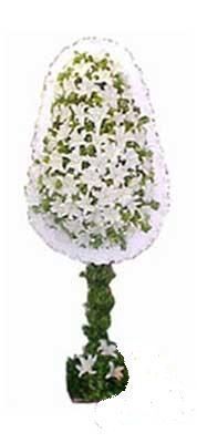 İsparta çiçek siparişi sitesi  nikah , dügün , açilis çiçek modeli  İsparta online çiçek gönderme sipariş