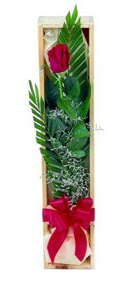 1 adet kutuda kirmizi gül  İsparta çiçek gönderme sitemiz güvenlidir