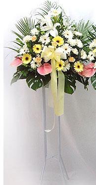 İsparta online çiçek gönderme sipariş   perförje çiçegi dügün çiçekleri