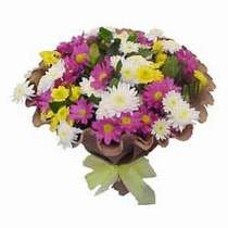 İsparta çiçekçi telefonları  Mevsim kir çiçegi demeti