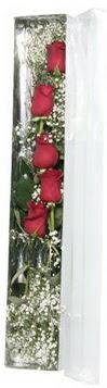 İsparta çiçek siparişi sitesi   5 adet gülden kutu güller