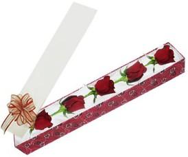 İsparta internetten çiçek satışı  kutu içerisinde 5 adet kirmizi gül