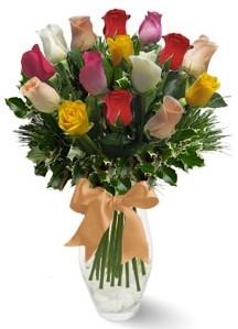 15 adet vazoda renkli gül  İsparta internetten çiçek satışı
