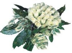 İsparta internetten çiçek siparişi  9 Beyaz gül Özel kisiler için