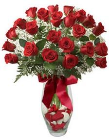 17 adet essiz kalitede kirmizi gül  İsparta çiçek mağazası , çiçekçi adresleri
