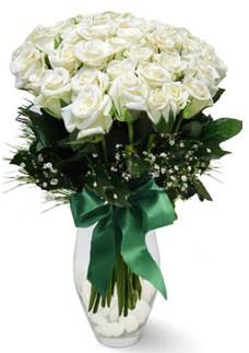 19 adet essiz kalitede beyaz gül  İsparta çiçekçiler
