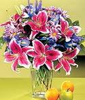 İsparta çiçek mağazası , çiçekçi adresleri  Sevgi bahçesi Özel  bir tercih