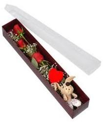 kutu içerisinde 3 adet gül ve oyuncak  İsparta cicekciler , cicek siparisi