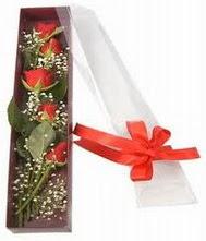 kutu içinde 5 adet kirmizi gül  İsparta internetten çiçek siparişi