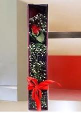 kutu içinde tek kirmizi gül  İsparta çiçek online çiçek siparişi