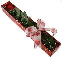 Tek kirmizi gül kutu içerisinde  İsparta güvenli kaliteli hızlı çiçek