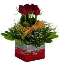 İsparta çiçek gönderme  7 adet mika yada cam vazoda gül tanzimi