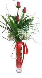 İsparta çiçek siparişi sitesi  3 adet kirmizi gül vazo içerisinde