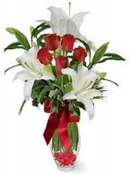 İsparta çiçek siparişi vermek  5 adet kirmizi gül ve 3 kandil kazablanka