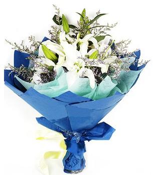 İsparta anneler günü çiçek yolla  4 adet dal kazablankadan görsel buket