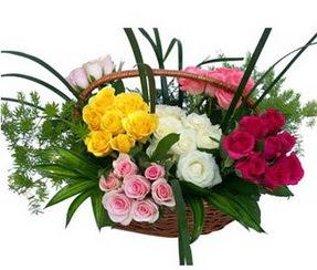 İsparta ucuz çiçek gönder  35 adet rengarenk güllerden sepet tanzimi