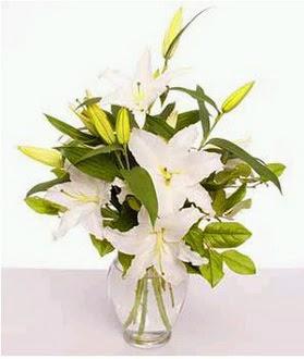 İsparta çiçek gönderme  2 dal cazablanca vazo çiçeği