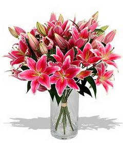 4 dal cazablanca görsel vazosu  İsparta çiçekçi mağazası
