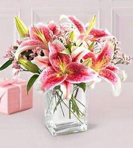 2 dal kazablanka görsel vazosu  İsparta çiçek siparişi sitesi