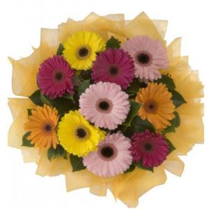 İsparta İnternetten çiçek siparişi  11 adet karışık gerbera çiçeği buketi