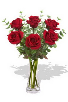 İsparta çiçekçi mağazası  6 kırmızı gül vazosu