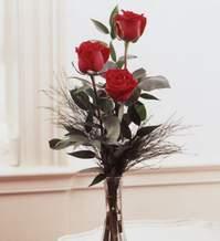 İsparta internetten çiçek satışı  Vazoda 3 adet güzel gül