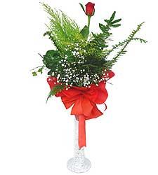 İsparta anneler günü çiçek yolla  Cam vazoda masum tek gül