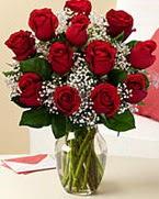 Sevgilime hediye 9 adet 1.ci kalite gül  İsparta anneler günü çiçek yolla