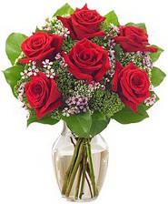 Kız arkadaşıma hediye 6 kırmızı gül  İsparta internetten çiçek siparişi