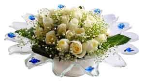 İsparta çiçek online çiçek siparişi  11 adet Beyaz güller özel cam tanzim