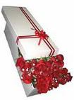 İsparta çiçekçi telefonları  11 adet 1.kalite magnum güller