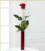 Vazo içerisinde 1 adet kırmızı gül  İsparta internetten çiçek siparişi