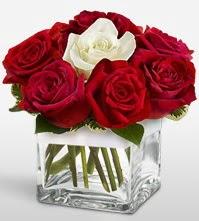 Tek aşkımsın çiçeği 8 kırmızı 1 beyaz gül  İsparta uluslararası çiçek gönderme