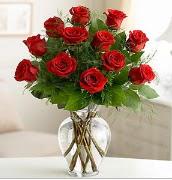 Vazo içerisinde 12 kırmızı gül  İsparta çiçek satışı