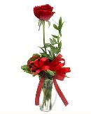 vazo içerisinde 1 adet kırmızı gül  İsparta çiçekçi telefonları