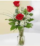 Vazo içerisinde 3 adet kırmızı gül  İsparta çiçek satışı