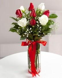 5 kırmızı 4 beyaz gül vazoda  İsparta cicekciler , cicek siparisi