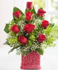 Cam içerisinde 9 adet kırmızı gül  İsparta internetten çiçek satışı