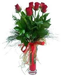 vazo içerisinde 5 kırmızı gül  İsparta güvenli kaliteli hızlı çiçek