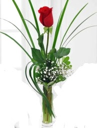 Cam içerisinde 1 kırmızı gül  İsparta çiçek gönderme sitemiz güvenlidir