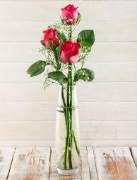 Cam içerisinde 3 kırmızı gül  İsparta çiçek satışı