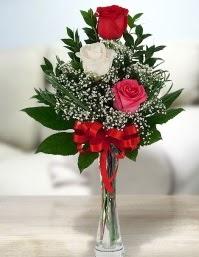 Camda 2 kırmızı 1 beyaz gül  İsparta ucuz çiçek gönder