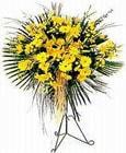 İsparta yurtiçi ve yurtdışı çiçek siparişi  Sari kazablanka Ferforje