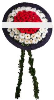 mozele çiçeği  İsparta hediye sevgilime hediye çiçek