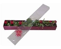 İsparta anneler günü çiçek yolla   6 adet kirmizi gül kutu içinde