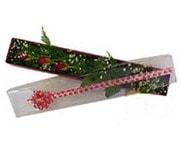 İsparta hediye çiçek yolla  3 adet gül.kutu yaldizlidir.
