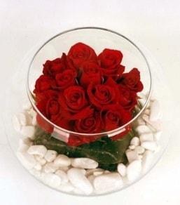 Cam fanusta 11 adet kırmızı gül  İsparta çiçek gönderme