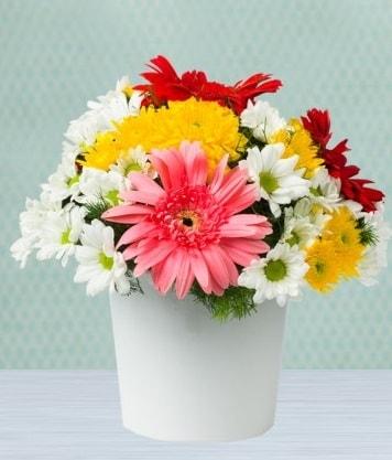 Seramik Vazoda Gelbera ve Papatya  İsparta çiçek gönderme